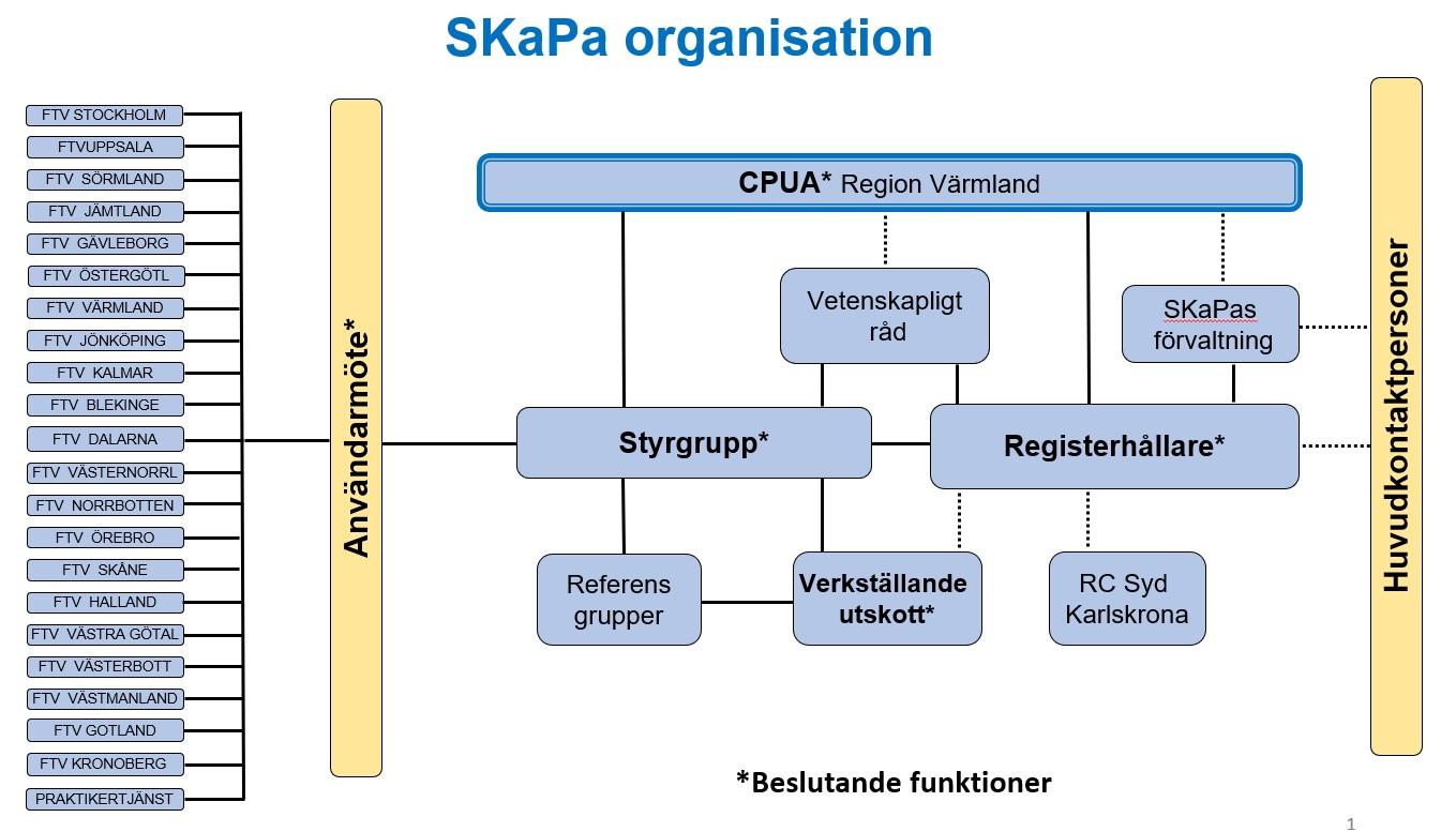 SKaPa organisation 2020